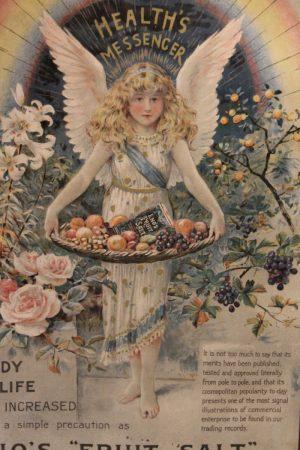 Enos Fruit Salt vintage advertising poster frame 2