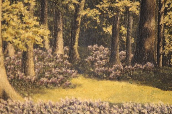 Oil on canvas Woodland scene 1